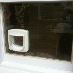 Cat flap installer london