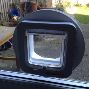 Cat-Flap fitted in Glass Unit - Merton Park SW19