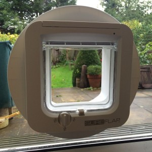 Microchip Cat-flap fitted in glass.