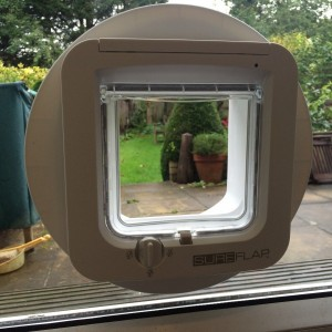 Micro-chipped cat-flap fitted into PVC door
