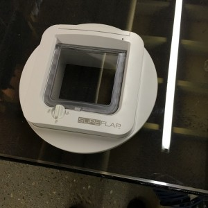 Micro-chipped cat-flap fitted to glass