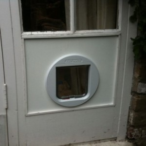 Cat-flap fitted - KT4