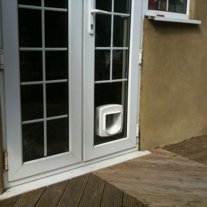 Cat flap in glass unit