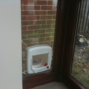 Cat Flap Fitted - Epsom KT17