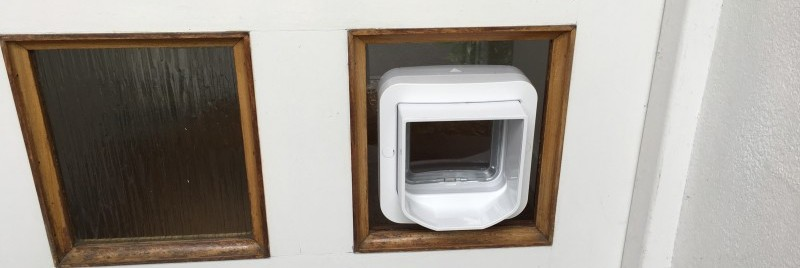 Microchip cat-flap fitted in clear polycarbonate plastic panel