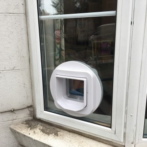Microchip cat-flap fitted in double-glazed window
