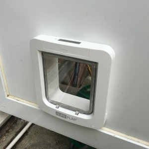 Small microchip dog-flap fitted in door panel